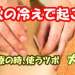 腰痛治療、秋の冷えで起こるぎっくり腰によく使うツボ大腸兪2
